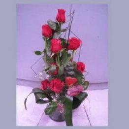 Centro 18 Rosas Rojas