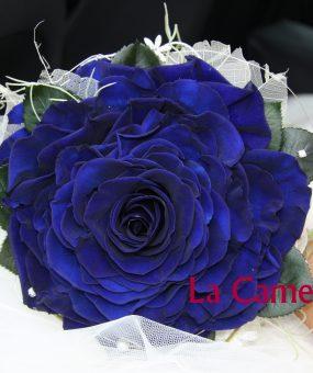 Rosmelia Azul Preservada