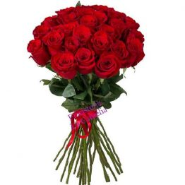24-rosas-rojas